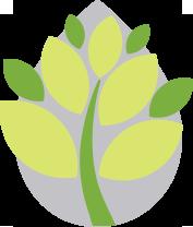 IberoSolve Respeto por el entorno. Conciencia ecológica